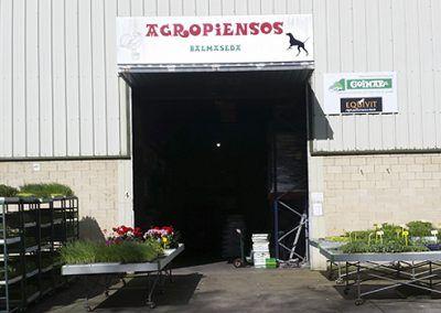 Agropiensos Balmaseda